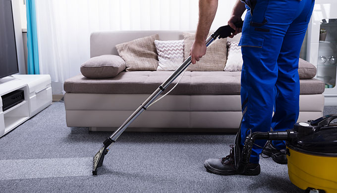Dragonfly carpet cleaning